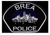 K9 Armor is proud to protect Brea PD K9 Jarvis