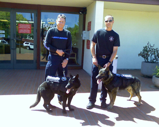 Click for giant image of Raven and Kyto of Novato PD