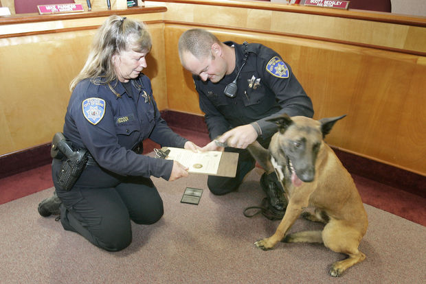 Lt. Peecook swearing in Napa PD K9 Rocky with a little help from his partner, Officer Brett Muratori